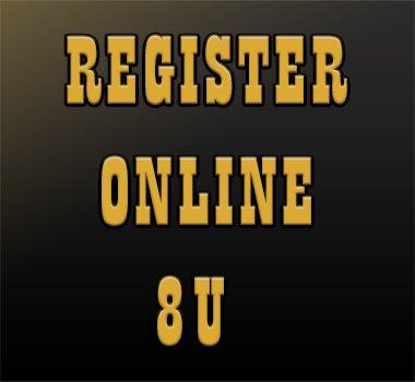 Northeast Stars Register Online 8U Square.jpg