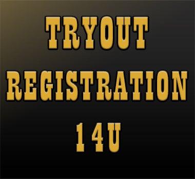 Northeast Stars Tryout Registration 14U Square.jpg