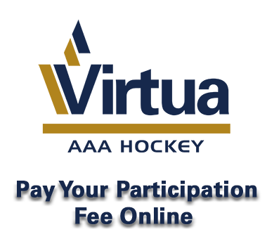 VirtuaHockeyParticipationFeeOnlineSquare.png