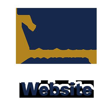 VirtuaHockeyWebsiteSquare.png